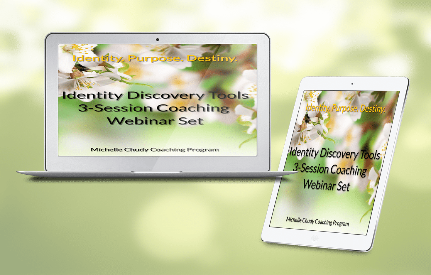 Identity Discovery Tools Webinar Set Gallery
