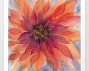 Darling Dahlia Watercolor